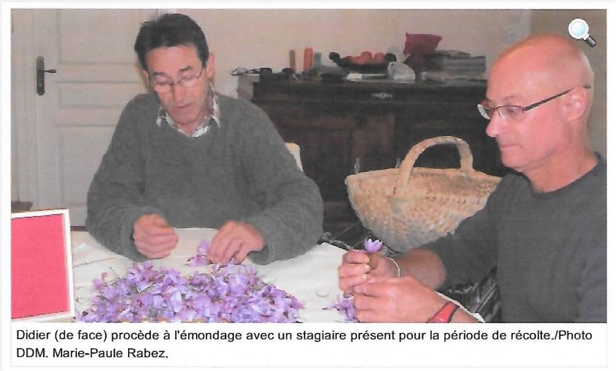 Article La Dépêche du Midi - Lot oct 2015